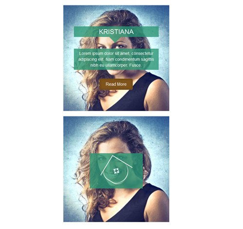 Hover Effect Style 99
