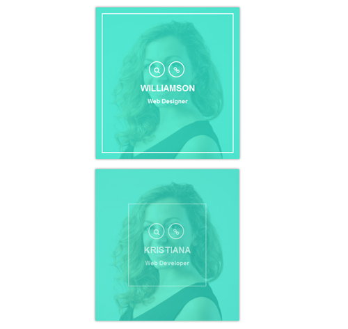 Hover Effect Style 111