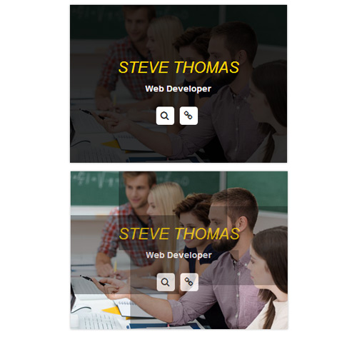 Hover Effect Style 172