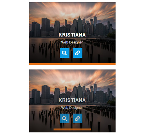 Hover Effect Style 195