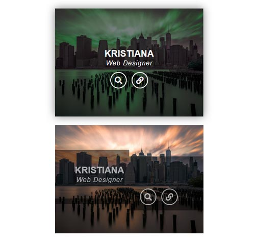 Hover Effect Style 209