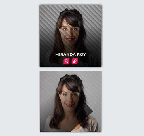Hover Effect Style 211