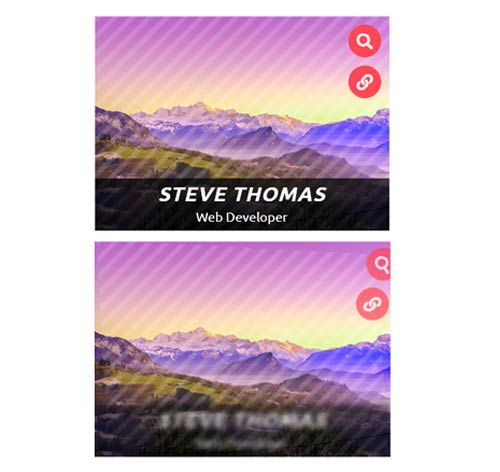Hover Effect Style 221