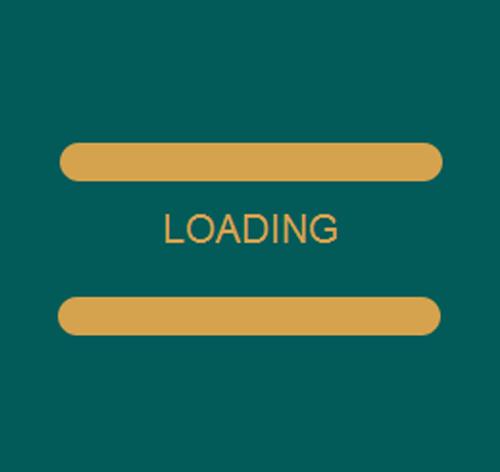 Preloader для сайта — стиль 29
